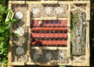 Insektenhotel - web groß